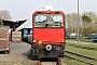 "FAUR 25666 - DB AutoZug ""399 106-4"" 06.05.2013 - Wangerooge BahnhofErnst Lauer"