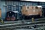 """Jung 5625 - DR""""310 423-9"""" 19.11.1992 - Gotha, BahnbetriebswerkErnst Lauer"""